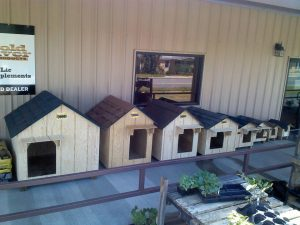 The Lineup Of Dog Houses At Ladd S Farm Supply Clarks